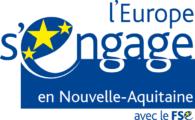 FSE Union Européenne